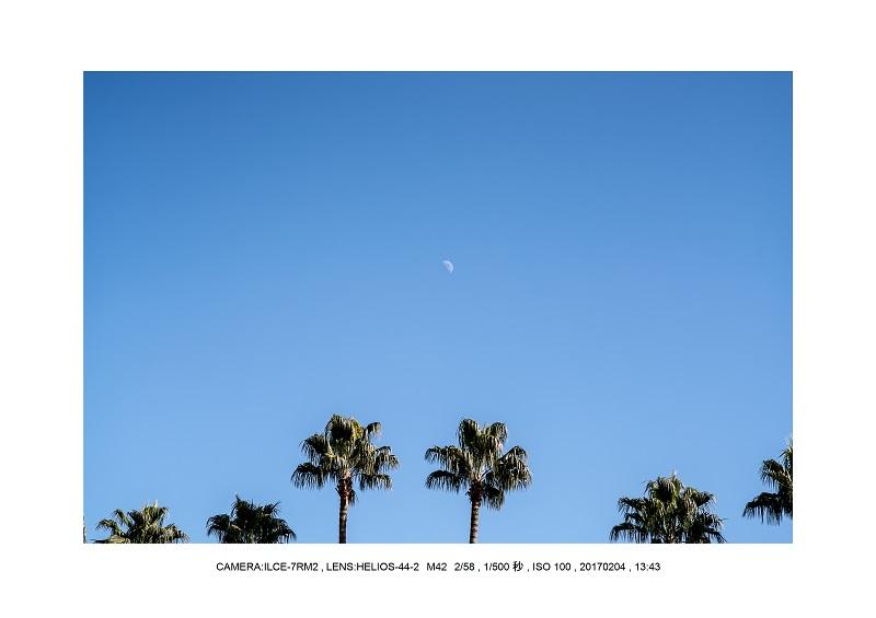 レンズの味を楽しむカメラ散歩長居植物園 Helios-44-2 M42 2 58-5.jpg