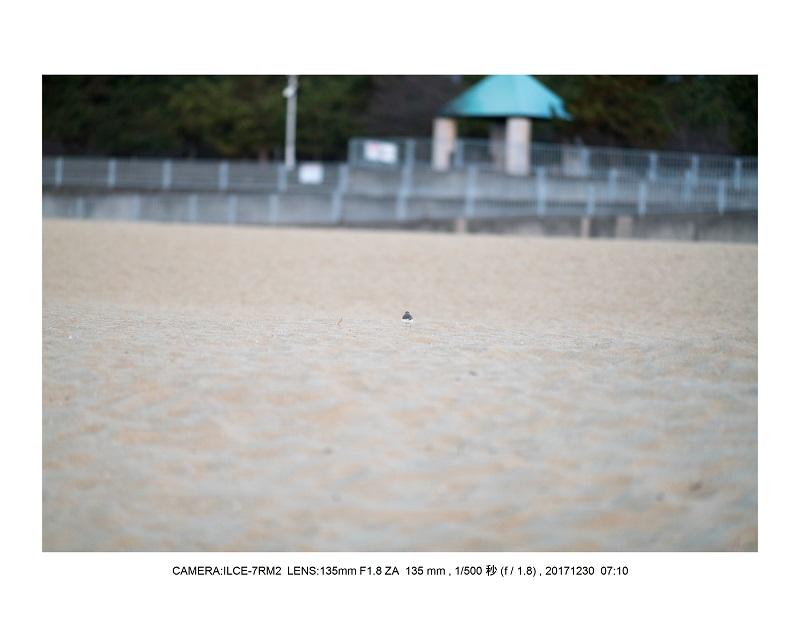 兵庫県の絶景・朝日と夕陽の潮芦屋浜ビーチ15.jpg