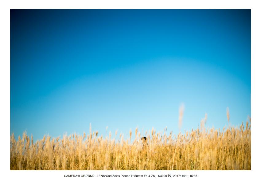 和歌山_風景_生石高原(オールドレンズ_関西_Carl Zeiss Planar 50mm F1.4 ZS M42)3.jpg