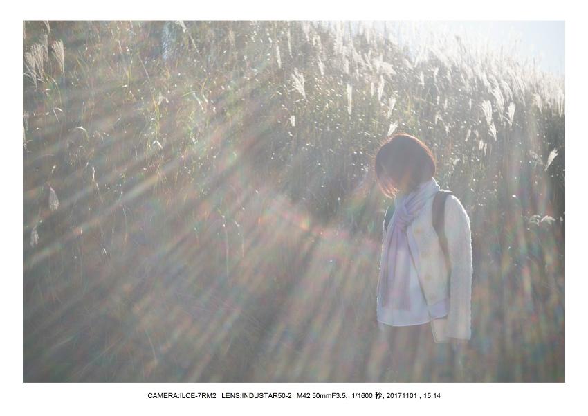 和歌山_風景_生石高原(オールドレンズ_関西_インダスター50-2 Industar 50mm M42)1.jpg