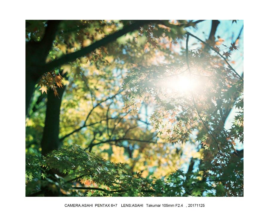 大阪・サントリー山崎蒸留所_ASAHI PENTAX 6×7 Takumar100mF2.4_11.jpg