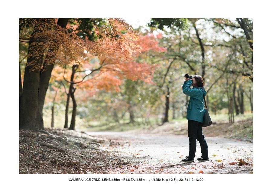 大阪・長居植物園紅葉見頃0.jpg