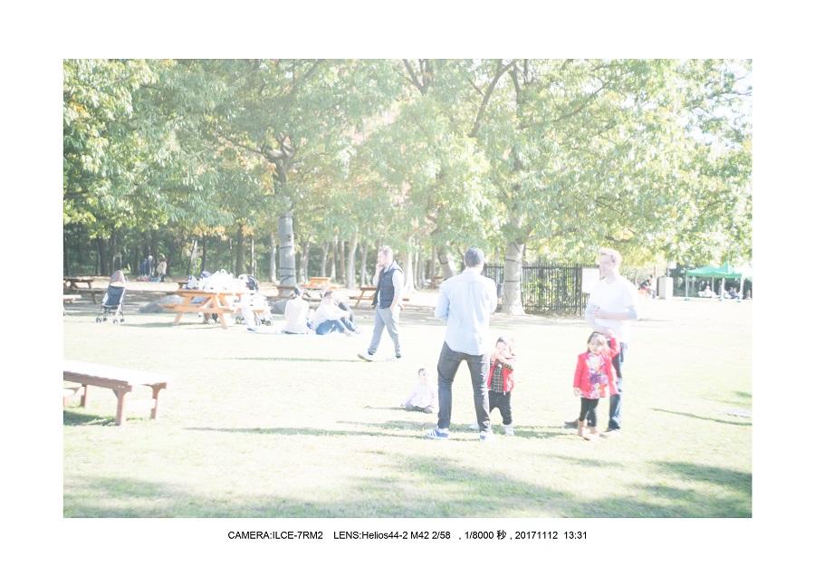 大阪・長居植物園紅葉見頃6.jpg