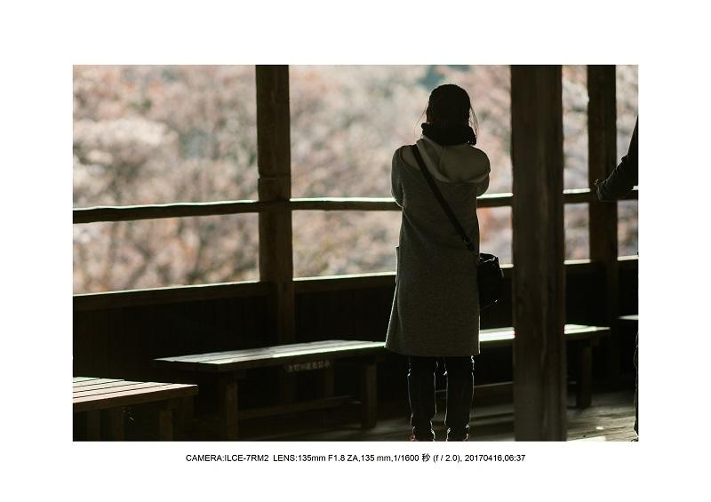 奈良の絶景風景・吉野山の桜見頃満開(下千本・中千本・上千本)旅行記画像19.jpg
