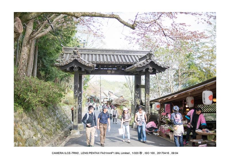 奈良の絶景風景・吉野山の桜見頃満開(下千本・中千本・上千本)旅行記画像69.jpg