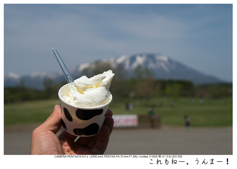 小岩井農場の一本桜14.jpg