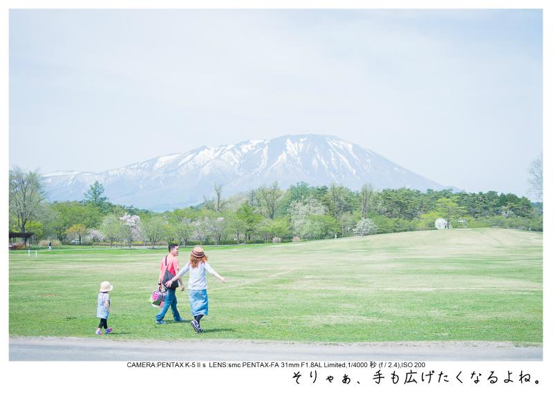 小岩井農場の一本桜15.jpg