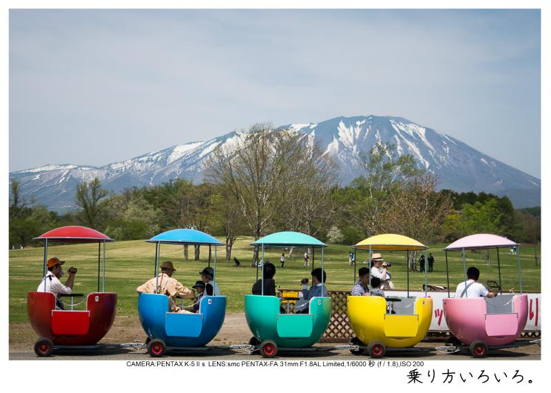 小岩井農場の一本桜16.jpg