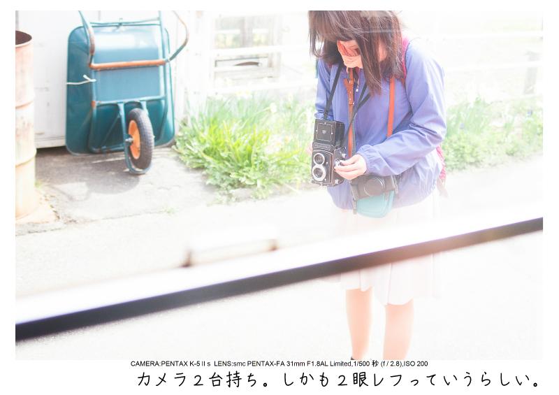 小湊鉄道_菜の花画像2.jpg