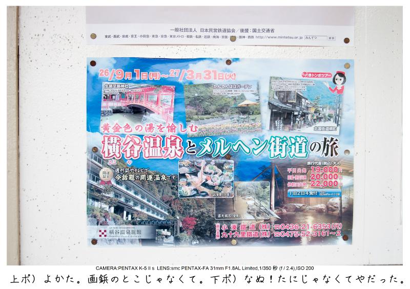 小湊鉄道_菜の花画像5.jpg
