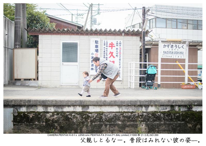 小湊鉄道_菜の花画像7.jpg