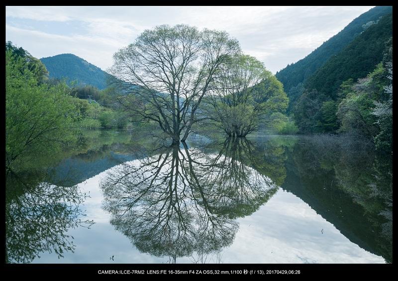 新緑の奈良・室生湖の鏡面シンメトリー12.jpg
