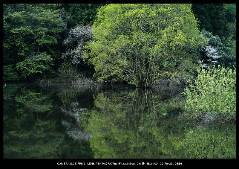 新緑の奈良・室生湖の鏡面シンメトリー4.jpg