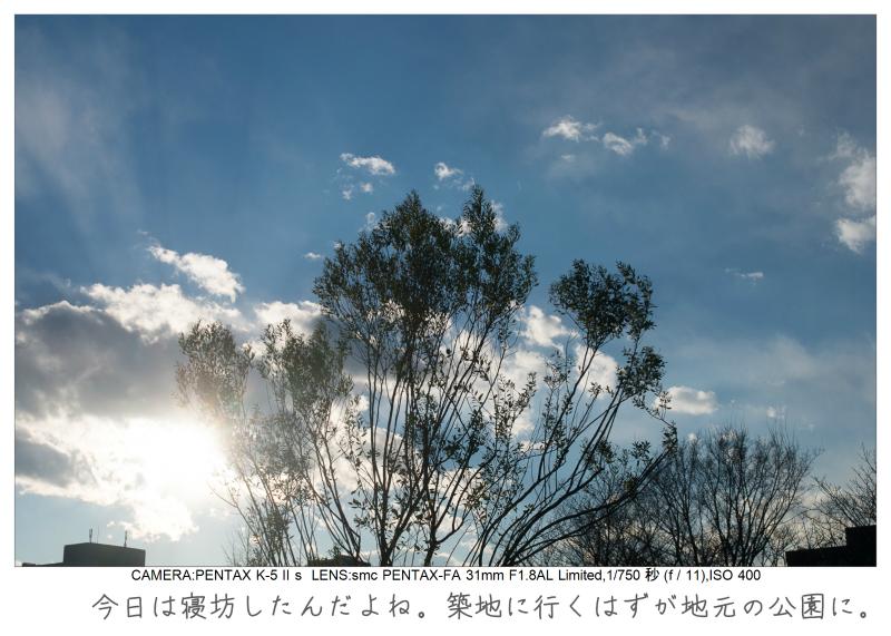 木場公園3.jpg