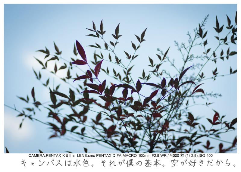 木場公園5.jpg