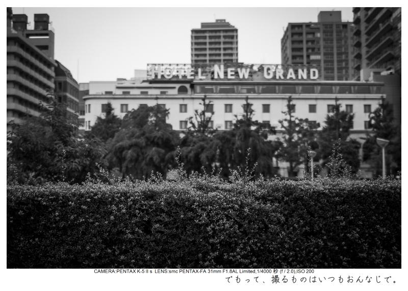 横浜3.jpg