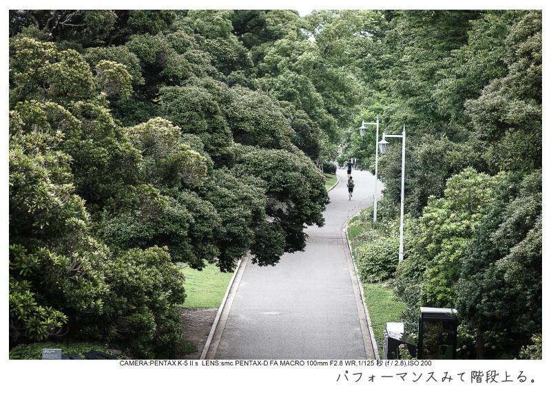 横浜6-1.jpg