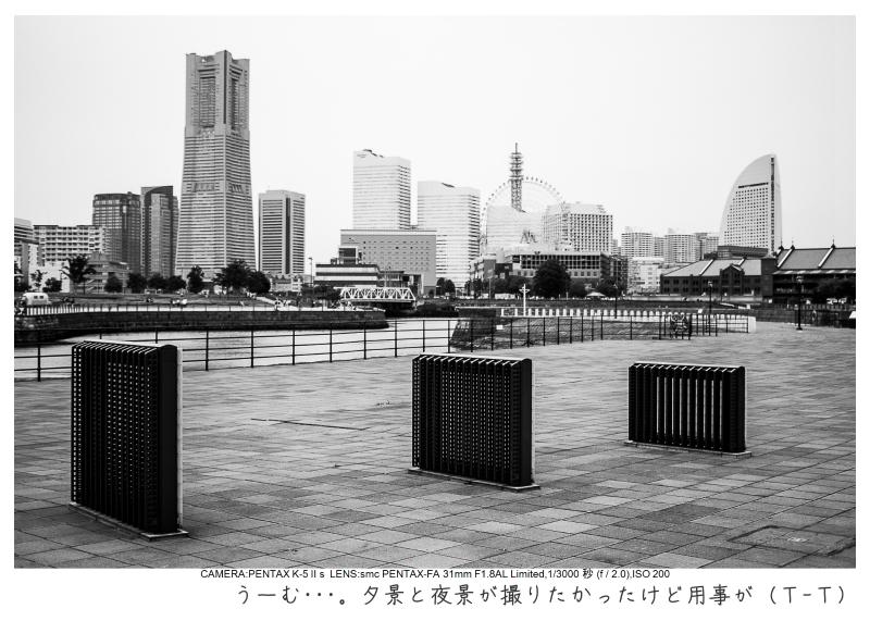 横浜9.jpg