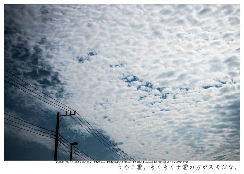湘南散歩20.jpg
