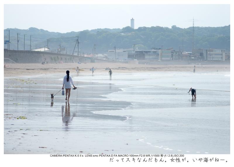 湘南散歩37.jpg