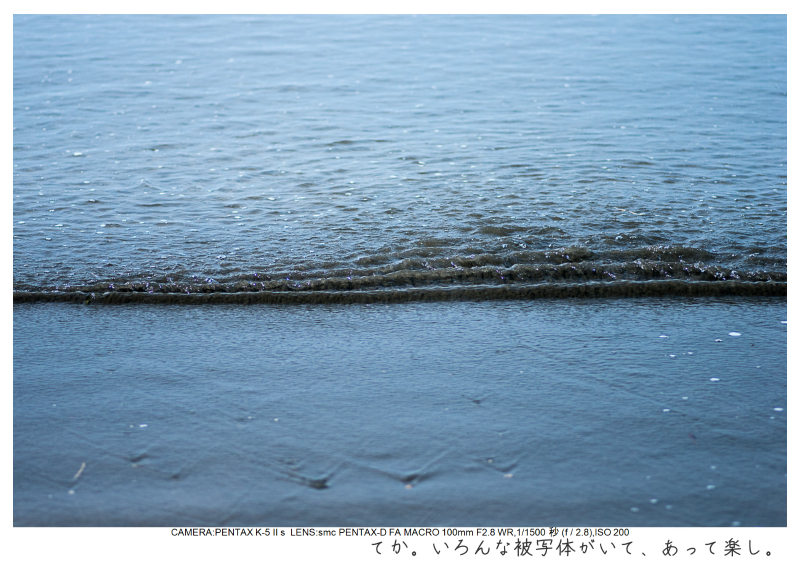 湘南散歩39.jpg