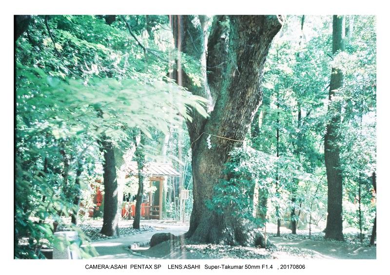 神戸北野異人館をフィルムカメラでスナップ0000.jpg