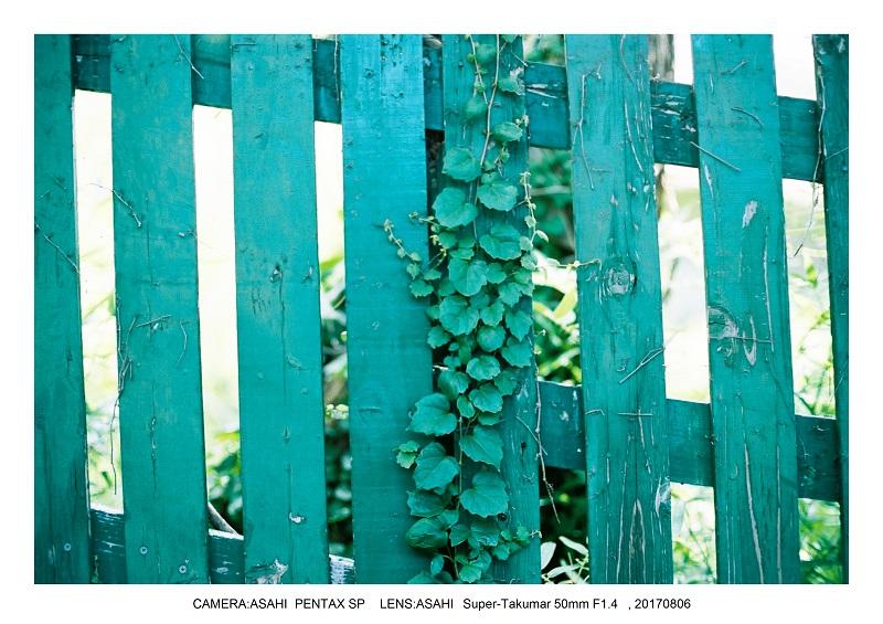 神戸北野異人館をフィルムカメラでスナップ9-1.jpg