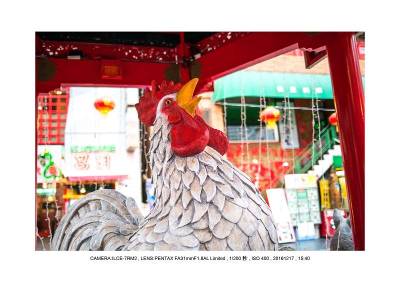 神戸居留地スナップカメラ散歩16.jpg