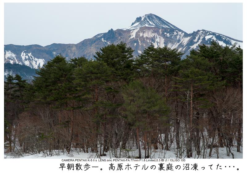 福島桜56裏磐梯.jpg