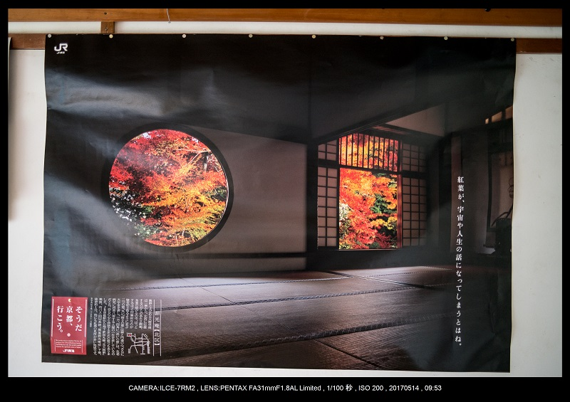 絶景京都・旅行記画像・春の新緑源光庵の丸窓5月11.jpg