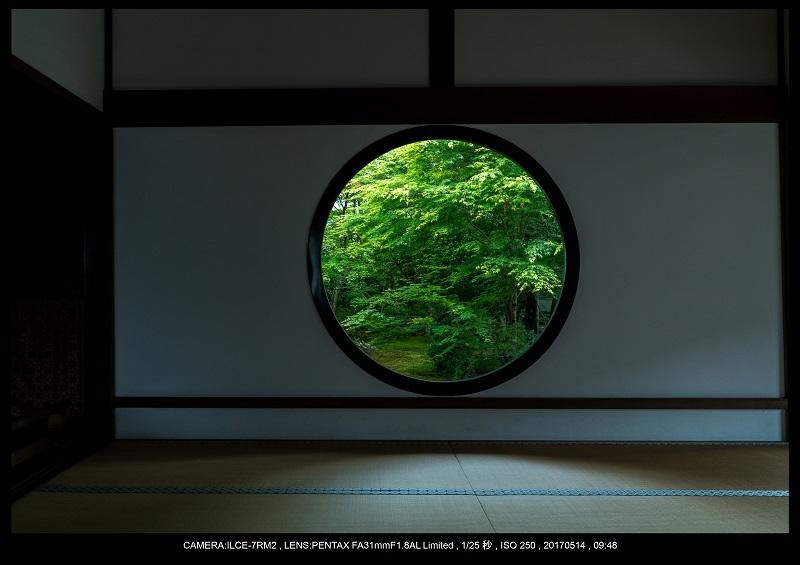 絶景京都・旅行記画像・春の新緑源光庵の丸窓5月9.jpg