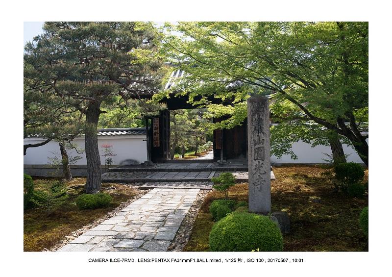 絶景京都・旅行記画像・春の新緑青もみじの圓光寺5月1.jpg
