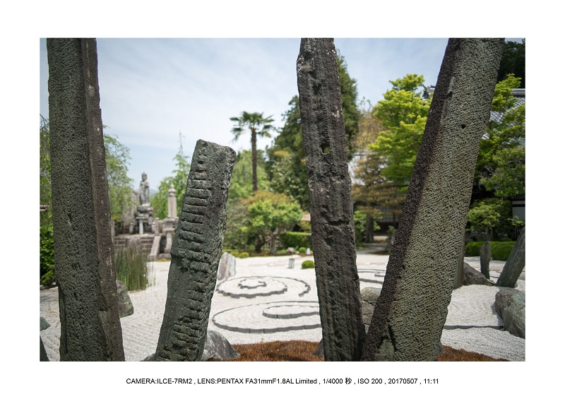 絶景京都・旅行記画像・春の新緑青もみじの圓光寺5月23.jpg