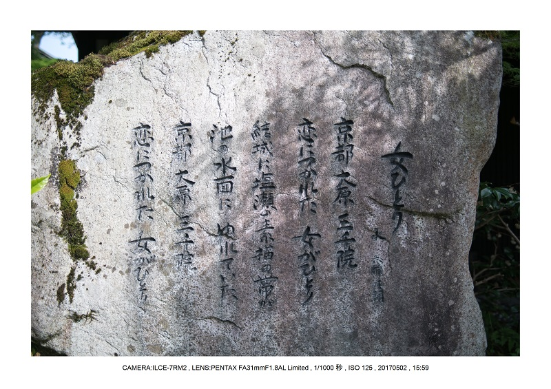 絶景京都・春の新緑青もみじの京都大原三千院画像5月37.jpg