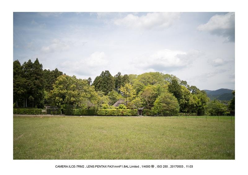 絶景京都・春の新緑青もみじの嵐山5月1.jpg