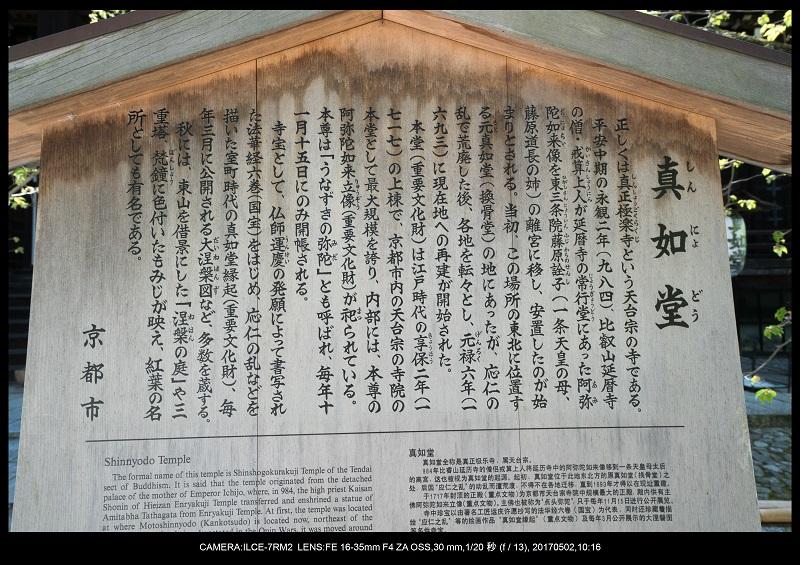 絶景京都・春の新緑青もみじの真如堂5月2.jpg