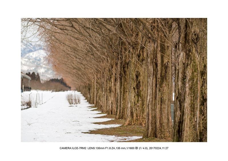 絶海関西・滋賀琵琶湖風景散歩105.jpg