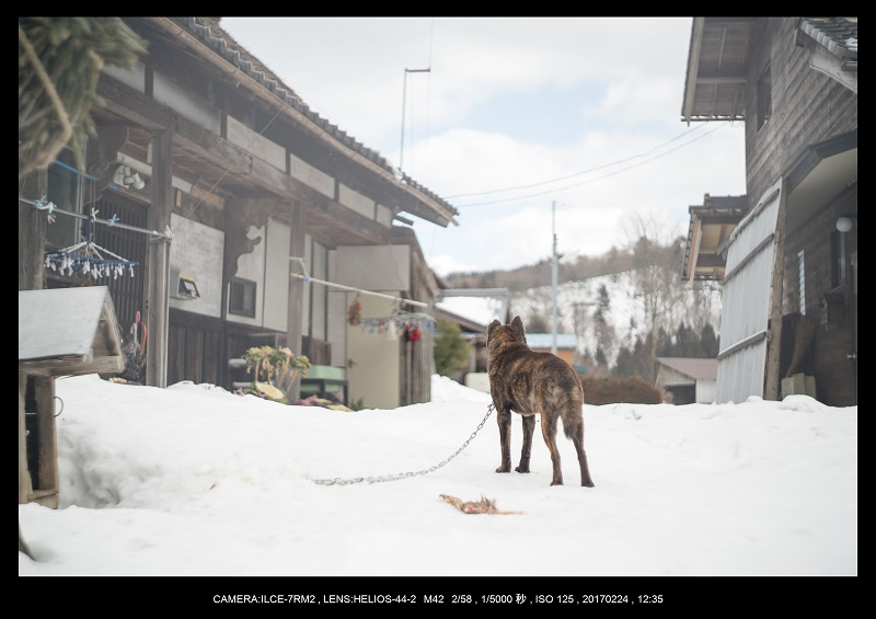 絶海関西・滋賀琵琶湖風景散歩113.jpg
