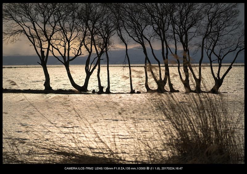 絶海関西・滋賀琵琶湖風景散歩156.jpg