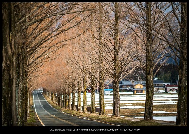 絶海関西・滋賀琵琶湖風景散歩95.jpg