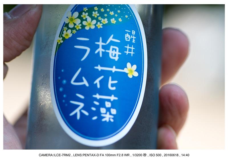 醒ヶ井(さめがい)の梅花藻(ばいかも)_27.jpg