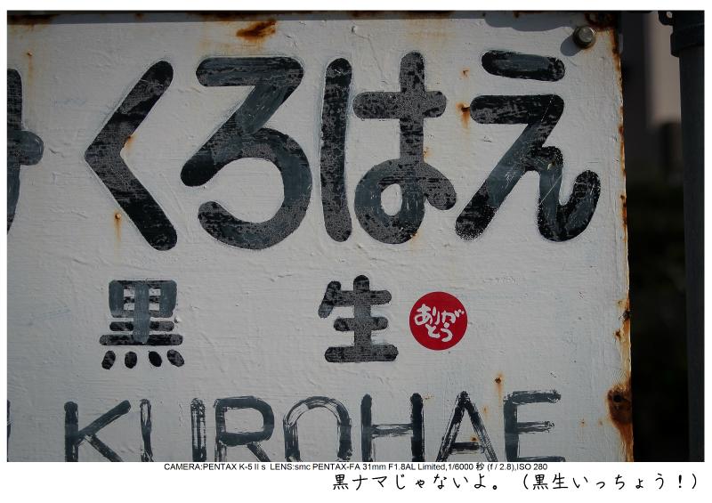 銚子電鉄10.jpg