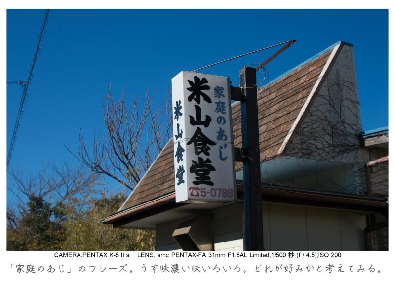 鋸南町の水仙11.jpg