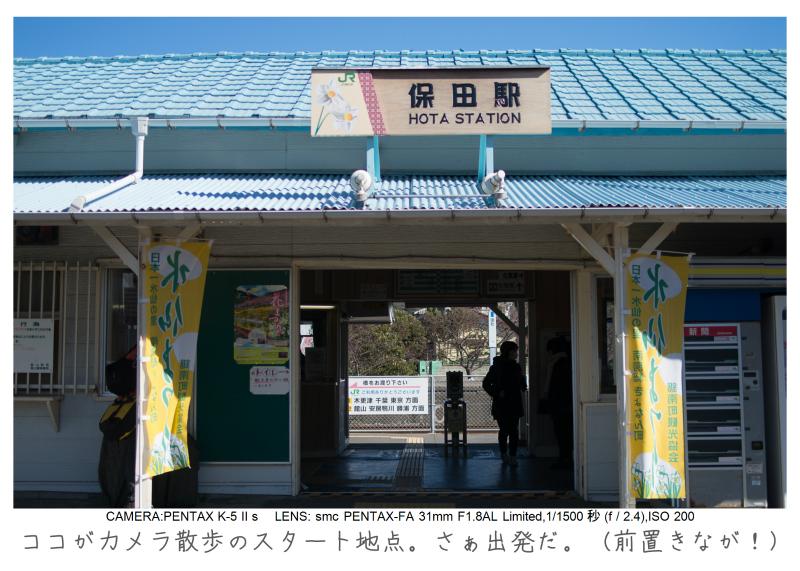 鋸南町の水仙9.jpg