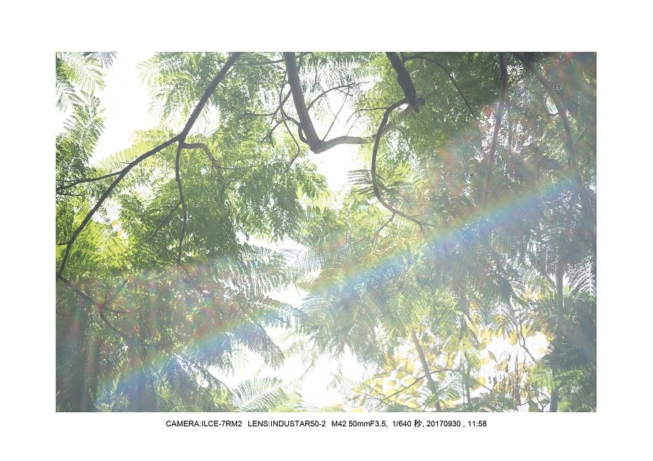 長居植物園20170930 INDUSTAR50-2 M42 50mmF3.5_0.jpg