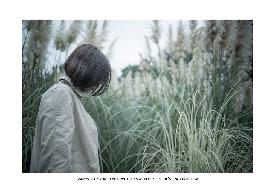 長居植物園20171014_0_PENTAX FA31mm F1.8.jpg