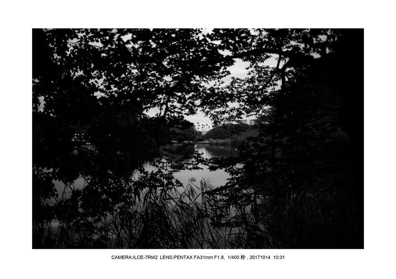 長居植物園20171014_2_PENTAX FA31mm F1.8.jpg
