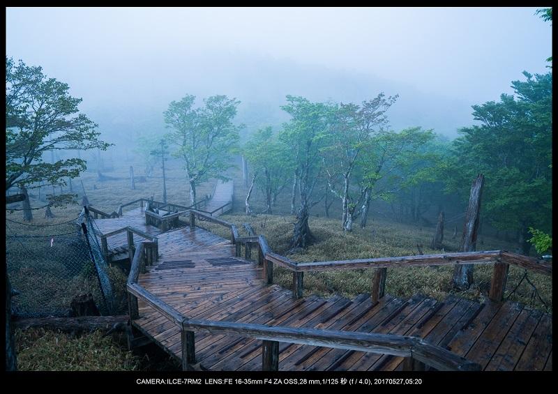 関西の星景スポット大台ケ原で星の風景撮影で天の川28.jpg