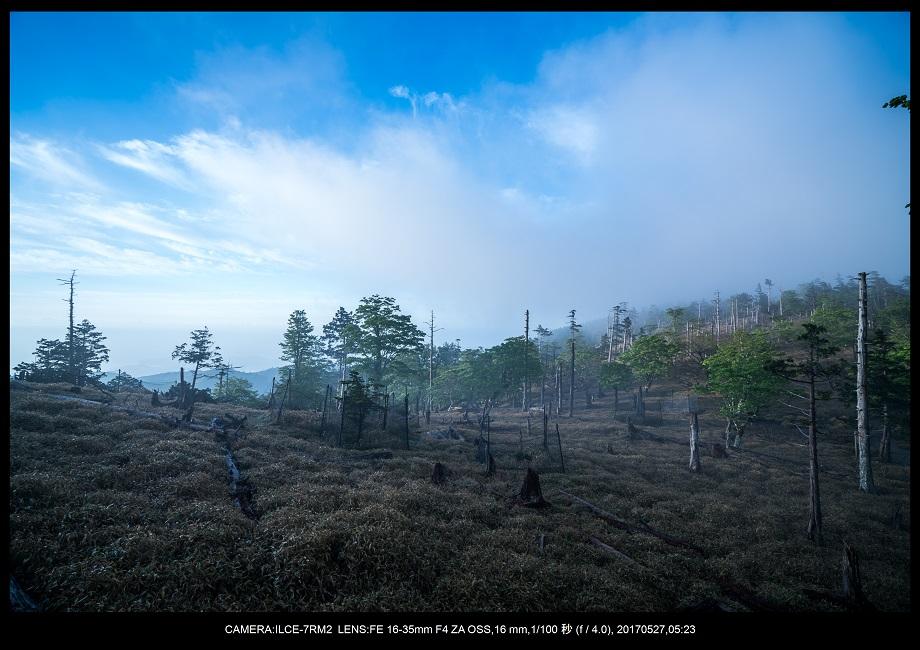 関西の星景スポット大台ケ原で星の風景撮影で天の川30.jpg