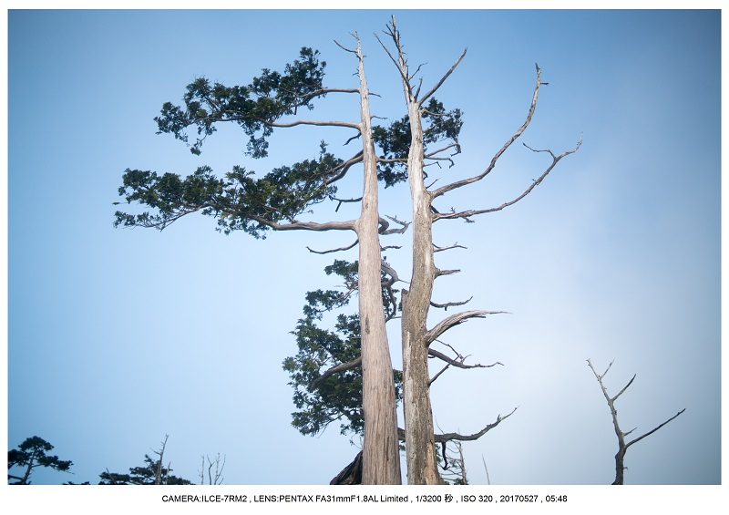 関西の星景スポット大台ケ原で星の風景撮影で天の川34.jpg